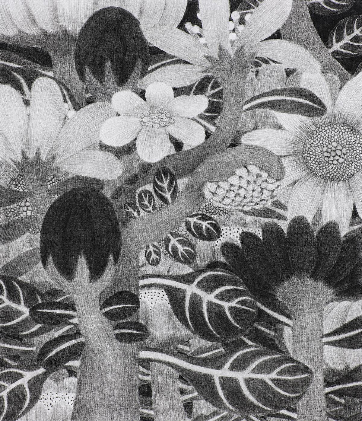 [20p2617] 2020_식물숲 #2_conte on daimaru_53.0×45.5.jpg