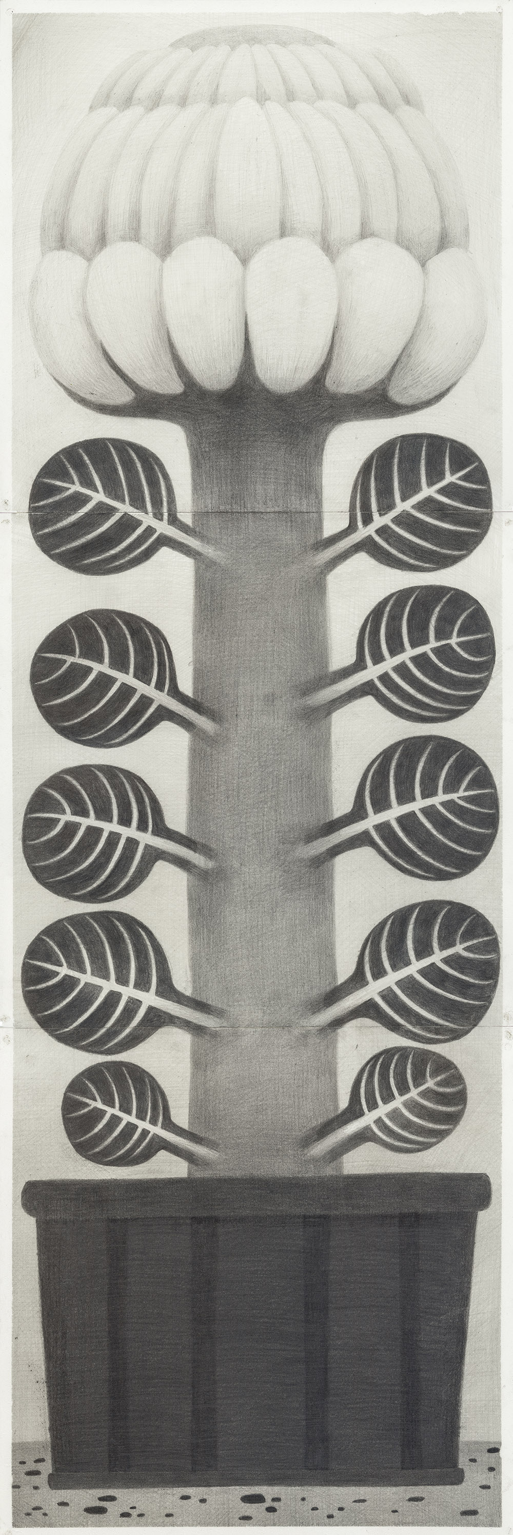 [20ds1123] Drawing_pencil on paper_90×30_2020.jpg