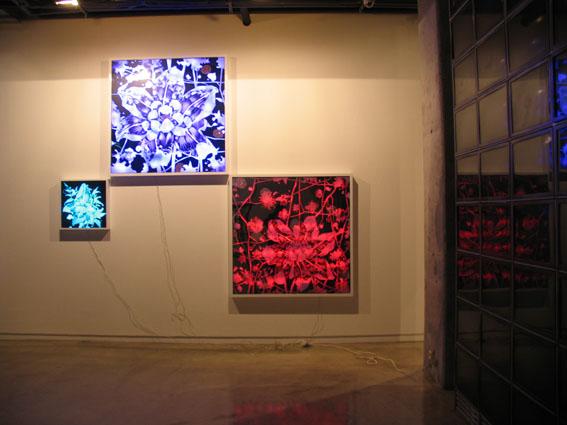 한기창_혼성의 풍경,LED프로그램,엑스선필름, 혼합재료,63x63cm,2009.jpg