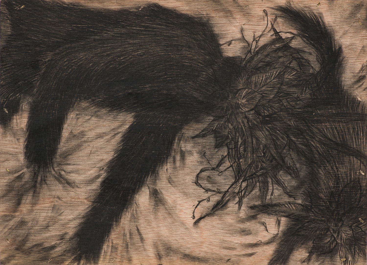 [15p2213] Not lonely solitude_conte on wood board_24.2×33.4_2015.jpg