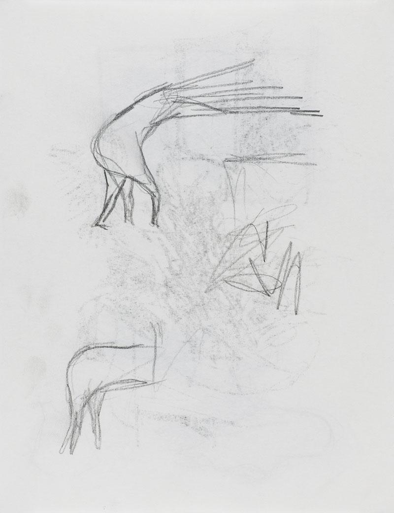 [15d239] Drawing Book_29.7×21.jpg