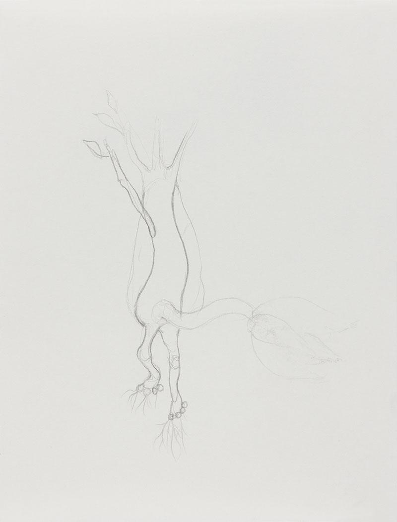 [15d3] Drawing Book_29.7×21.jpg