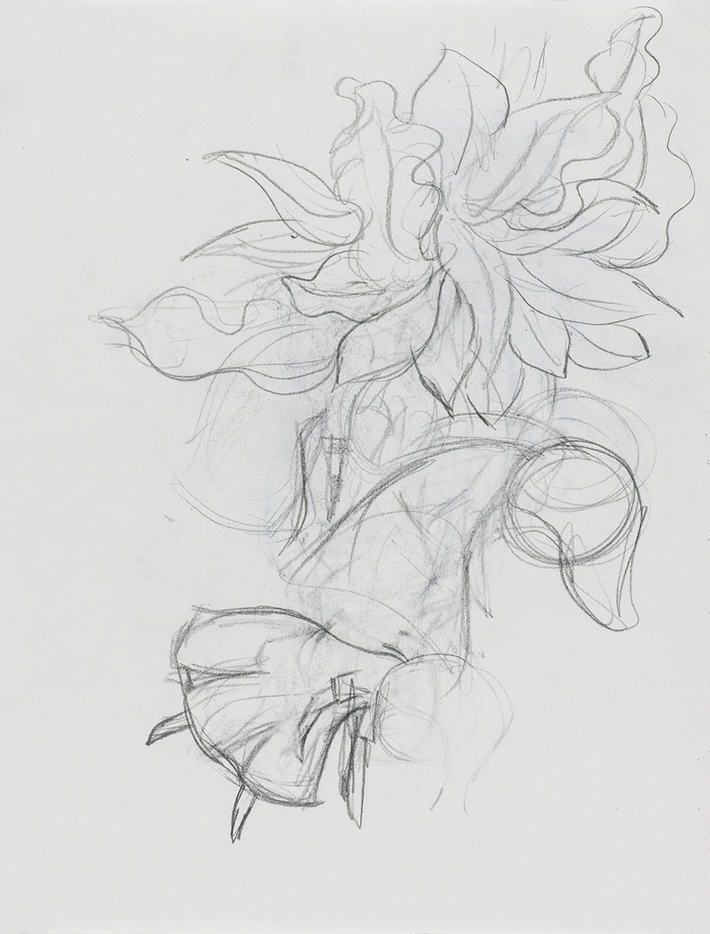 [15d367] Drawing Book_29.7×21.jpg